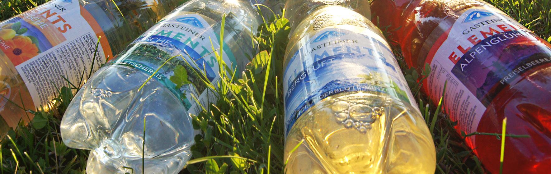 Gasteiner Elements im Gras